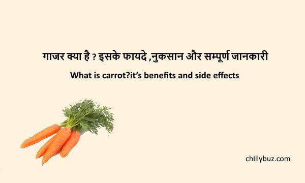 Carrot in hindi : गाजर क्या है ? इसके फायदे ,नुकसान और सम्पूर्ण जानकारी