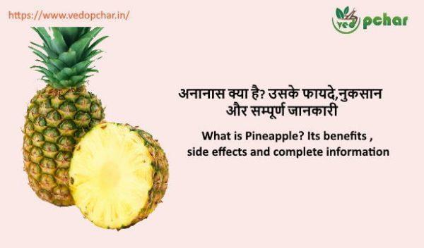 Pineapple in hindi : अनानास क्या है? उसके फायदे,नुकसान और सम्पूर्ण जानकारी