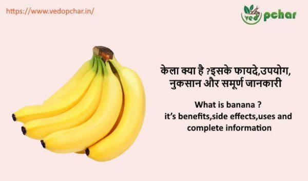Banana in hindi : केला क्या है ?इसके फायदे,उपयोग,नुकसान और समूर्ण जानकारी