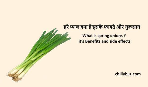 Spring onions in hindi : हरे प्याज क्या है इसके फायदे और नुकसान