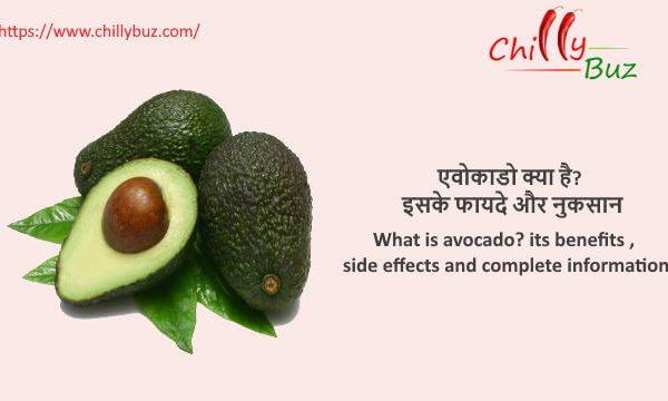 Avocado in hindi : एवोकाडो क्या है? इसके फायदे और नुकसान