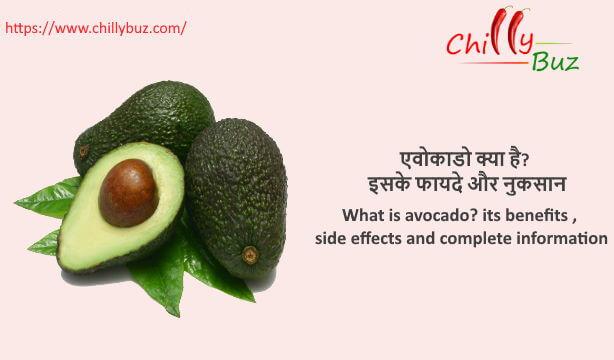 avocado in hindi